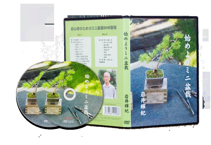 始めようミニ盆栽 DVD
